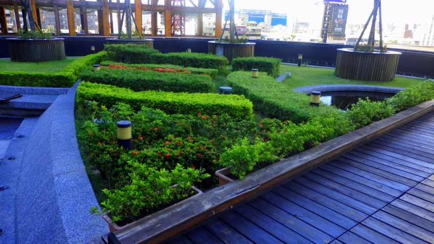 rooftop garden patio