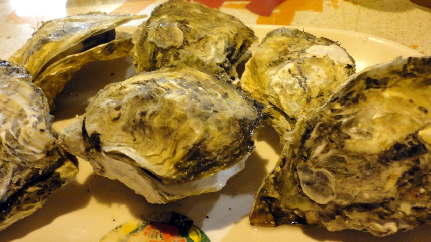 roast oysters