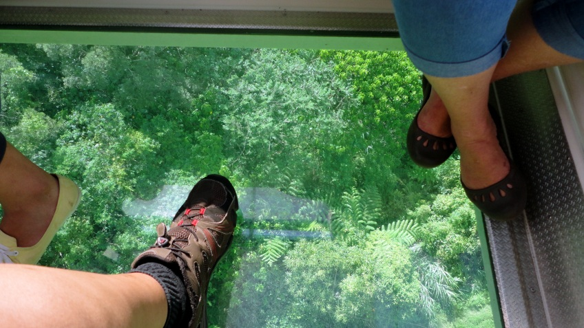our glass-bottomed gondola car