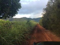 dirt road that's doesn't lead to Papa'a Beach