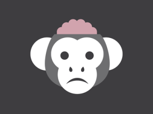 chilled-monkey-brain_1x