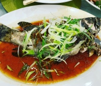 whole steamed grouper